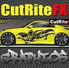 Vinyl Auto Body Graphics Decal sticker Car Dragon cr235 items in