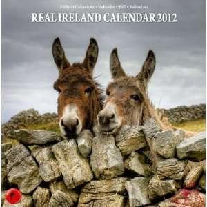 2012) (5390534032000): Designer Brian Murphy, Liam Blake: Books