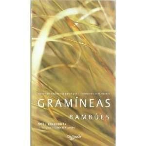 formas (Spanish Edition) (9788431535056): Noel Kingsbury: Books