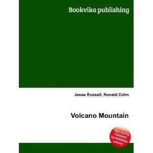 Volcano Mountain Ronald Cohn Jesse Russell Books