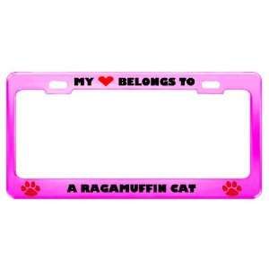 A Ragamuffin Cat Pet Pink Metal License Plate Frame Tag