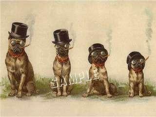 CIGAR SMOKING PUGS Victorian *CANVAS* DOG Art LARGE