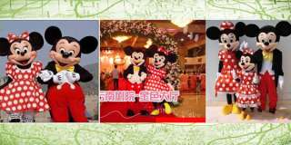 adult mickey & minnie costume outdoor party cosplay fancy cartoon