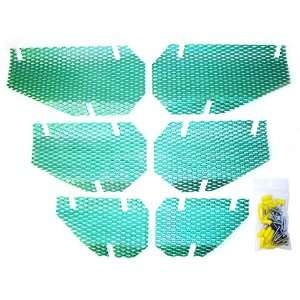 Screen Kit Arctic Cat Candygreen Automotive
