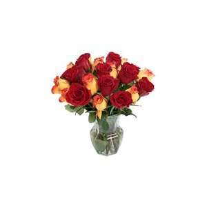 2 Dozen Yellow & Red Roses: Patio, Lawn & Garden