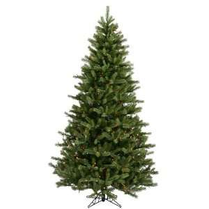 54 Black Hills Spruce 700 Multi Color Lights Christmas Tree (A894177