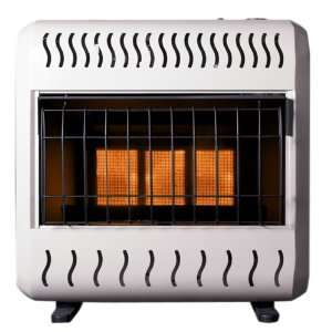 Dual Fuel Gas Space Heater with Thermostat and Blower