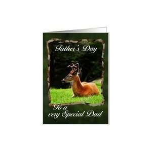 Buck Deer / to a Special Dad   Fathers Day card Card
