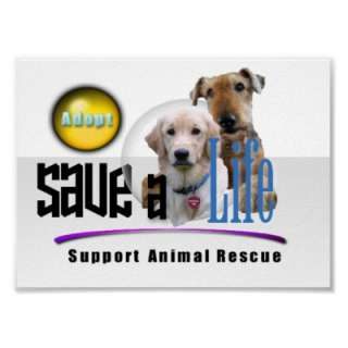 SUPPORT ANIMAL RESCUE   ADOPT A DOG! BE A FRIEND, SAVE A LIFE!