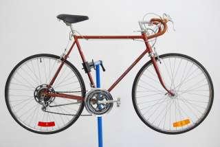 Vintage 1974 Schwinn Continental Chesnut Road Bicycle 24 Bike Dia